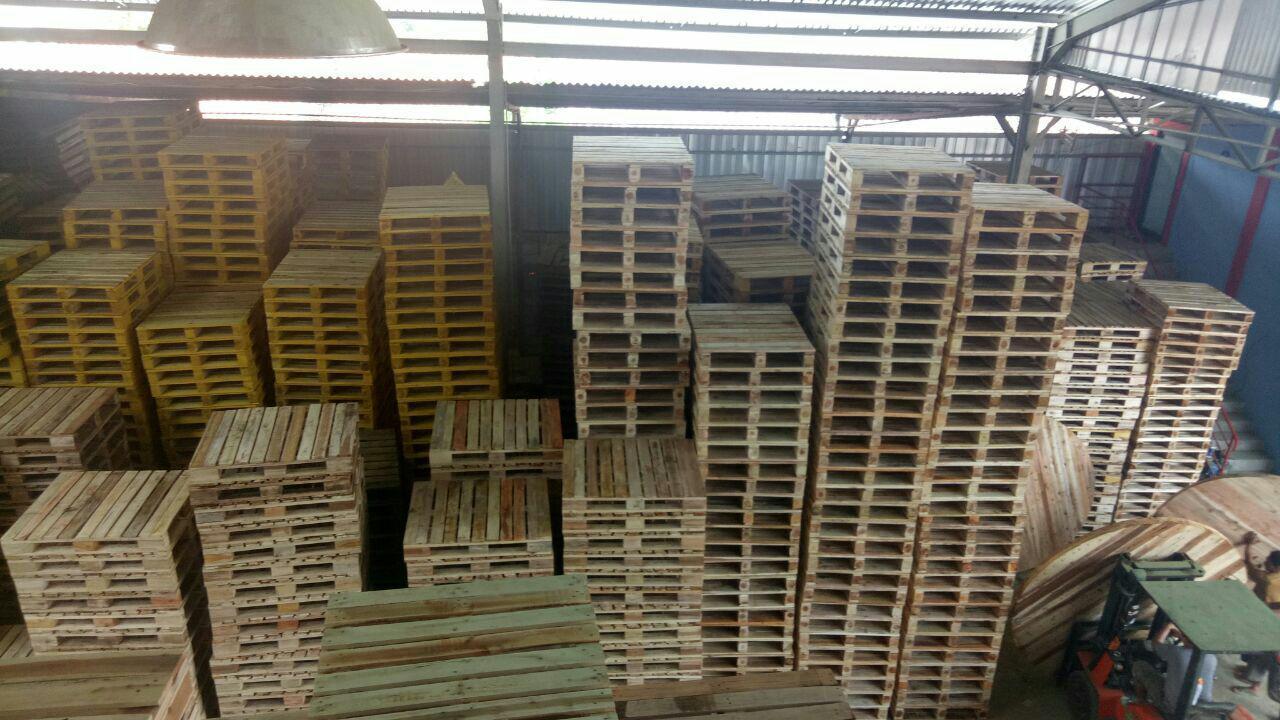 order pallet kayu