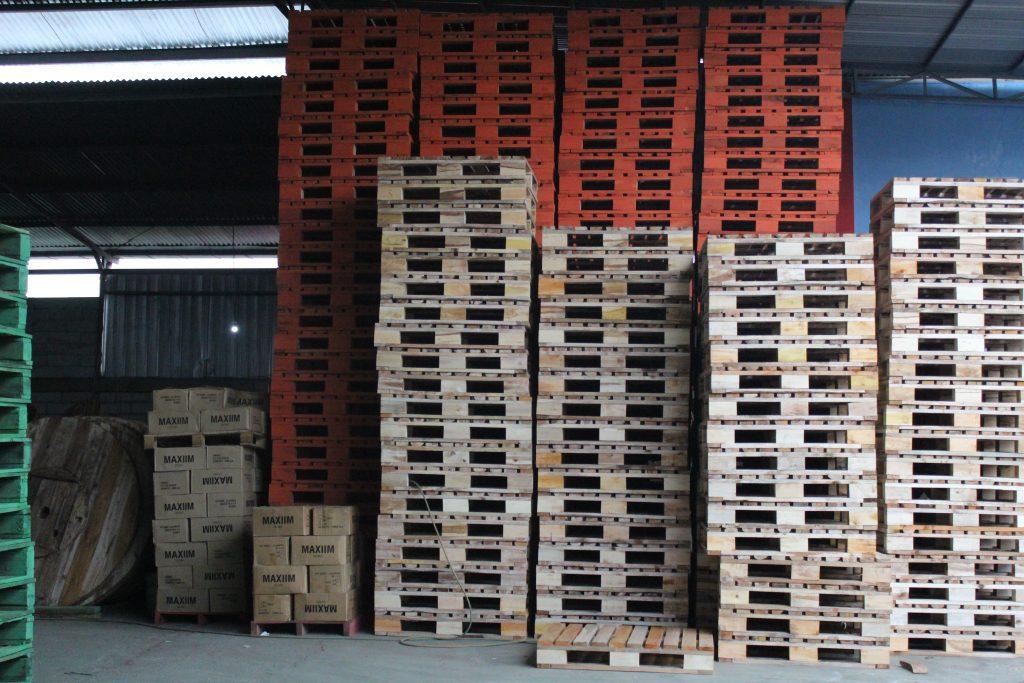 Supplier Pallet Kayu Manokwari